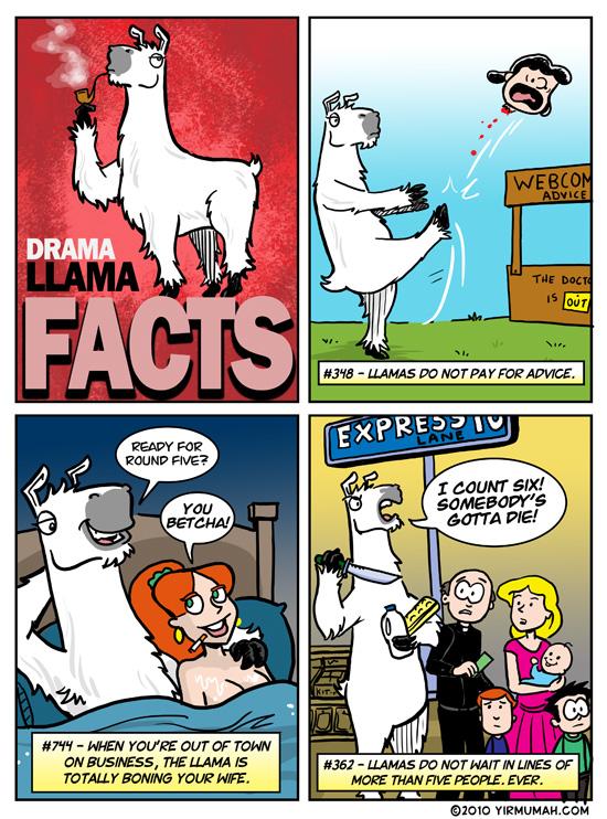 Drama Llama FACTS